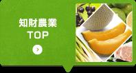 知財農業TOP